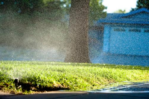 Sprinklers running after a sprinkler repair in Larkspur, CA